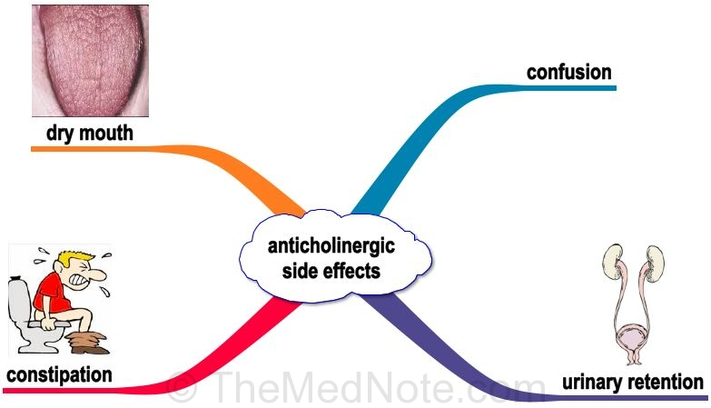 effects of anticholinergic drugs, Skeleton