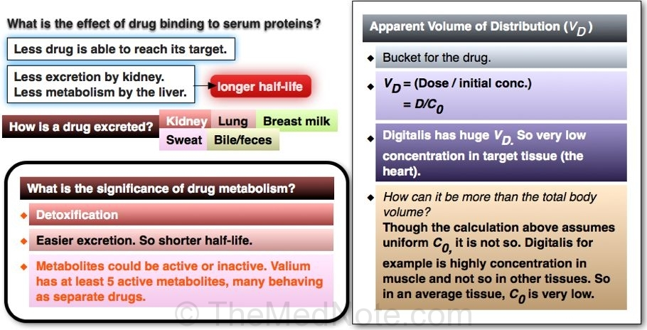Post image for Drug Kinetics Overview