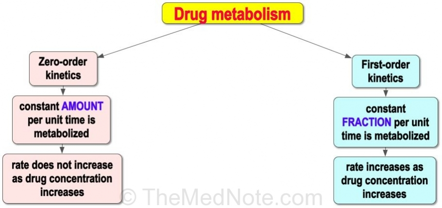 Drug Metabolism: Zero-order vs First-order Kinetics