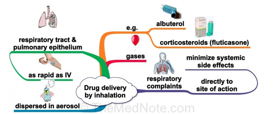 Post image for Route of Drug Delivery: Inhalation