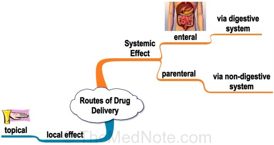 Routes of Drug Delivery Based on Local vs Systemic Effects