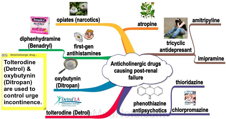 Anticholinergic Drugs Causing Post-renal failure