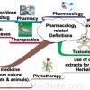 Thumbnail image for Pharmacology Related Definitions