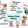 Thumbnail image for Routes of Drug Delivery